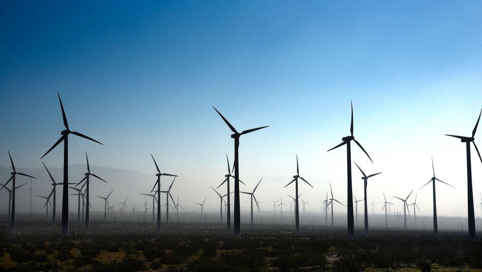 Windpark in Kalifornien: Großanleger wie Kaliforniens Pensionsfonds meiden längst die Kohlewirtschaft.