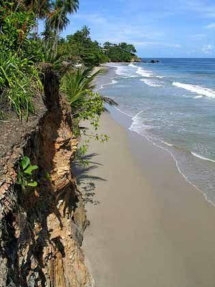 Karibischer Traum: Strand von Blanchisseuse an der Nordküste Trinidads