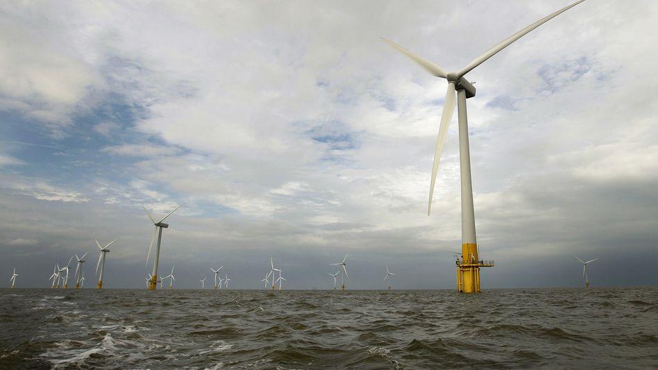 Offshore-Windpark vor Großbritannien: RWE, Siemens und die Stadtwerke München haben gemeinsam mehr als zwei Milliarden Euro in ein solches Projekt investiert
