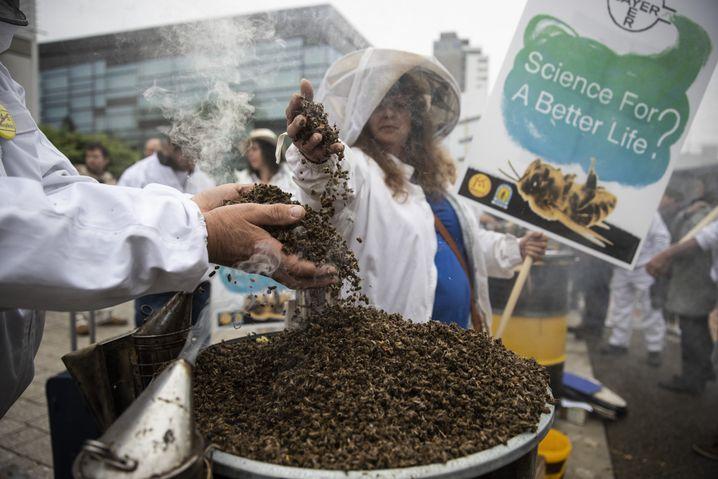 Tote Bienen: Symbolischer Protest gegen Bayer vor Beginn der Hauptversammlung