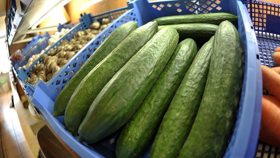 Lieber vermeiden: Das Robert-Koch-Institut warnt weiter vor dem Verzehr von Gurken, Tomaten und Blattsalaten