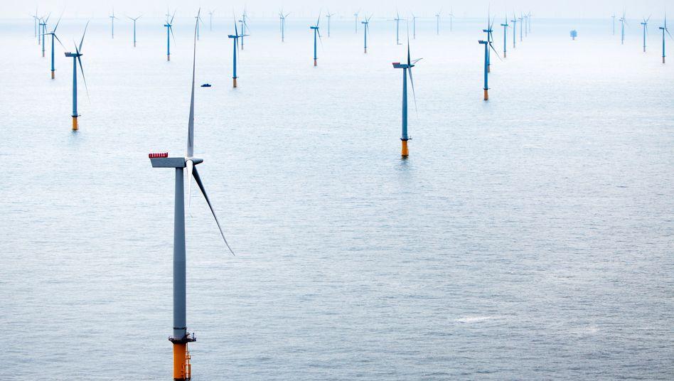 Siemens-Windräder in der Themsemündung: 630 Megawatt Leistung für eine halbe Million Haushalte