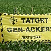 Ramponiertes Image: Monsanto sollte seine Firmenstrategie überdenken