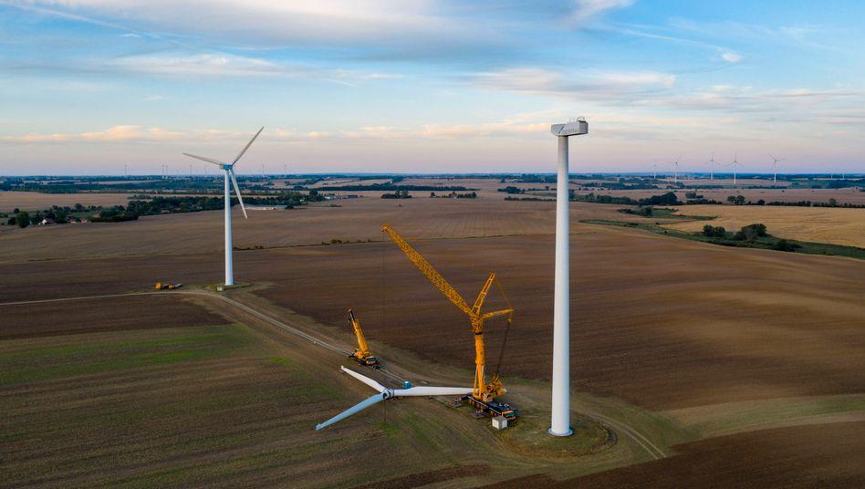 Drohende Demontage: Windräder in der Uckermark