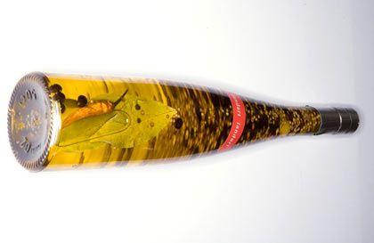Gewürzöl von Landart, Preis: 12,50 Euro