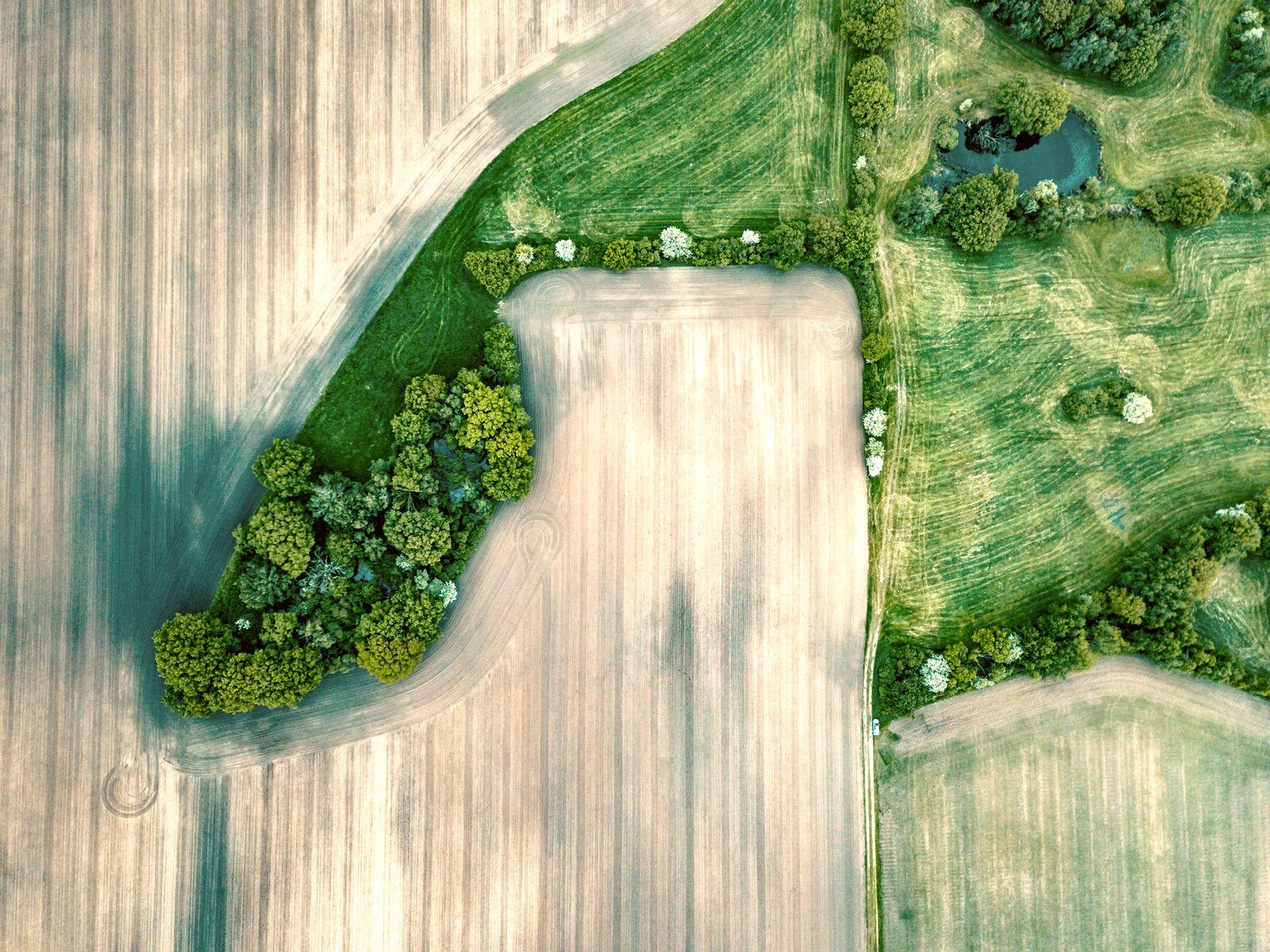 geometry of fields