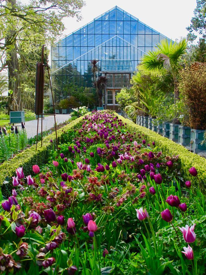 Der botanische Garten in Leiden ist der älteste in den Niederlanden.