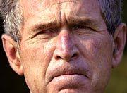 Vorwurf der kurzsichtigen Entscheidung: US-Präsident Bush