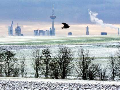 Sonnenaufgang über Frankfurt: Leichter Aufschwung schon messbar
