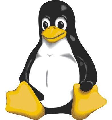 Linux zum Ausprobieren: Linux und Windows lassen sich unter bestimmten Umständen auch auf einem Rechner nutzen