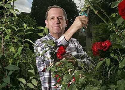 Gefragter Ratgeber: Nach 44 Jahren bei Metro hat Ex-Manager Wilhelm Demmer endlich Zeit für seine Rosen. Mindestens einmal pro Woche ist er noch in der Firma, im Sommer kümmerte er sich um die Vorbereitung der Wahl des Arbeitnehmervertreters in den Aufsichtsrat.