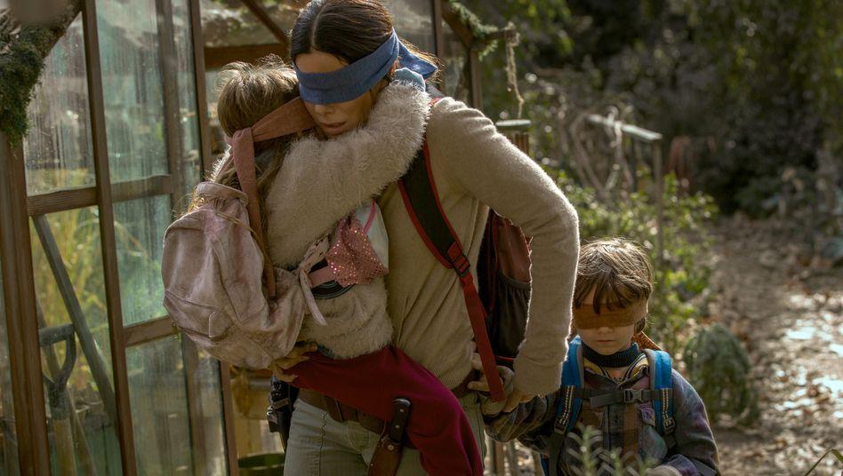 """Netflix: Der Horrorthriller """"'Bird Box"""" sorgt für Kundenwachstum"""