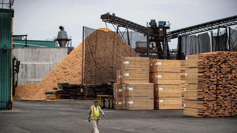 Heiße Ware: Holz in einem Sägewerk in Nordamerika