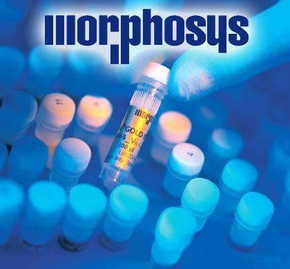 Antikörperbibliothek von Morphosys: ... denn für jedes therapeutische Antikörperprojekt und erreichte Forschungsziel erhält Morphosys Geld aus Leverkusen. Morphosys arbeitet auf ähnlicher Basis auch mit Novartis und Merck zusammen.