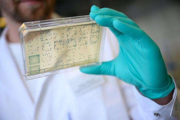 Forscher in Labor: Nach Moderna testen auch Sinovac und CNPG einen möglichen Impfstoff gegen das Coronavirus am Menschen
