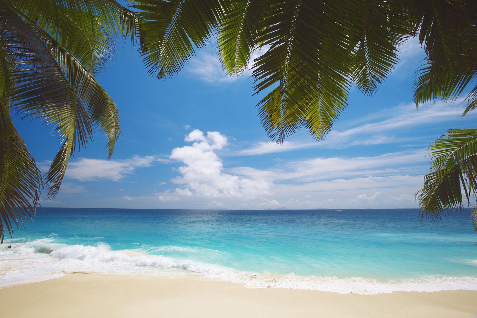 NICHT MEHR VERWENDEN! - Seychellen