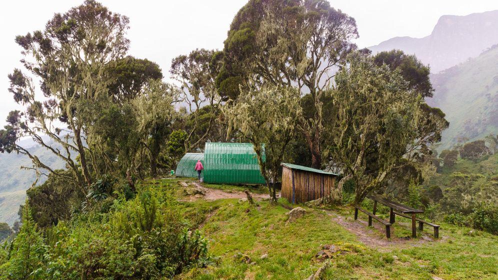 Trekking: Unterwegs in Afrikas sagenhaften Mondbergen