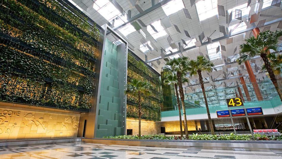 Hängende Gärten im Flughafen von Singapur: Anleger können beim Immobilieninvestment auf Umweltgesichtspunkte achten