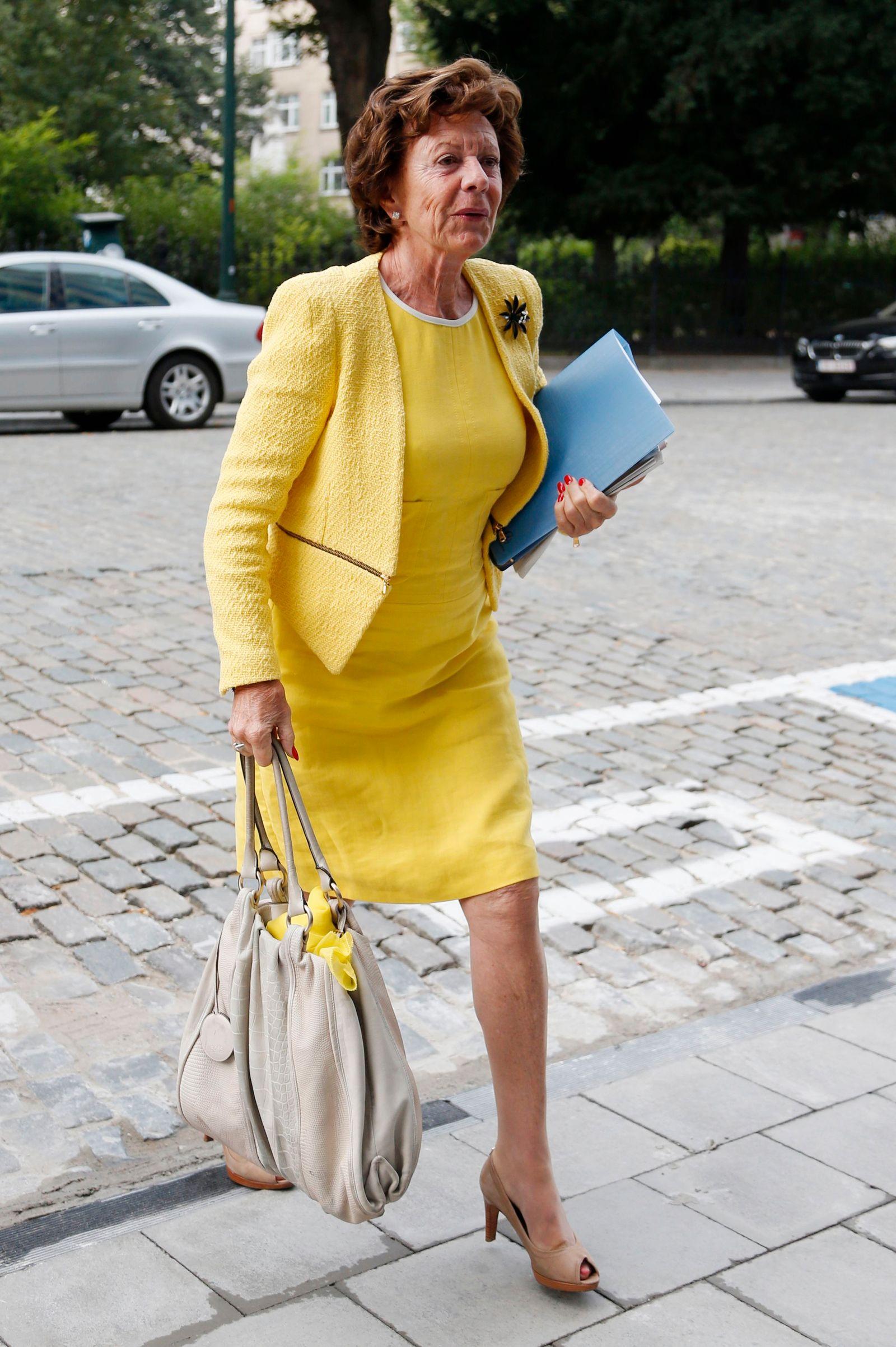 Neelie Kroes (mmKopie)