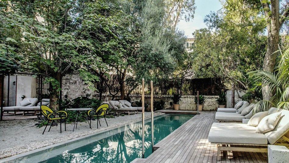 SCHÖNER SCHWIMMEN Alte Zitronenbäume am Pool, schöner Garten.
