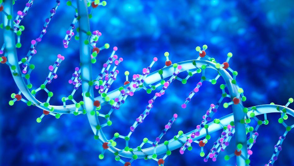 DNA-Rendering: Der Konsumgüterhersteller Nestlé lässt in Japan die DNA seiner Kunden analysieren