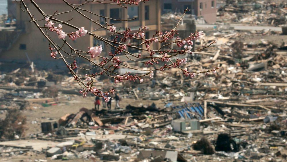 Nach der Naturkatastrophe: Zerstörung und Hoffnung in Japan