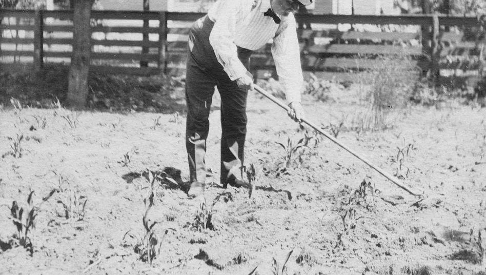 William Wallace Cargill, Gründer des Korn-Imperiums: Die meisten Vertreter des Cargill-Clans leben im Verborgenen - und sehr auskömmlich von dem, was ihr Vorfahr gesät hat