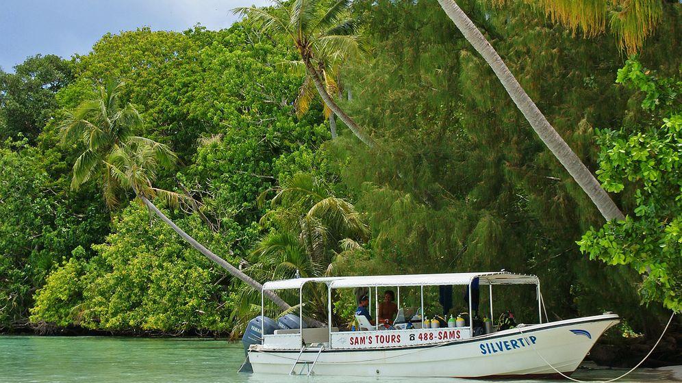 Unterwasserurlaub: Abtauchen rund um Palau