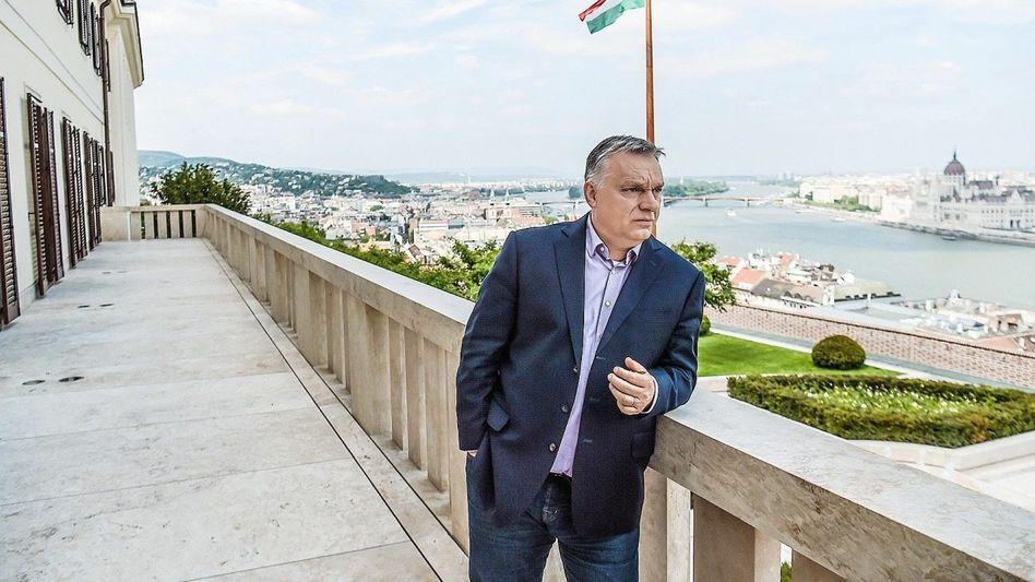 Herrscherpose: Premier Viktor Orbán auf der Burg von Buda