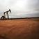 USA wollen Energiefirmen eventuell teilverstaatlichen