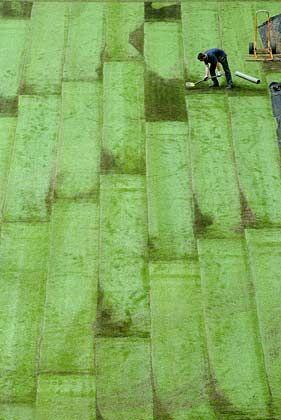 Patchwork: Innerhalb von zehn Tagen soll der Rasen ausgelegt sein
