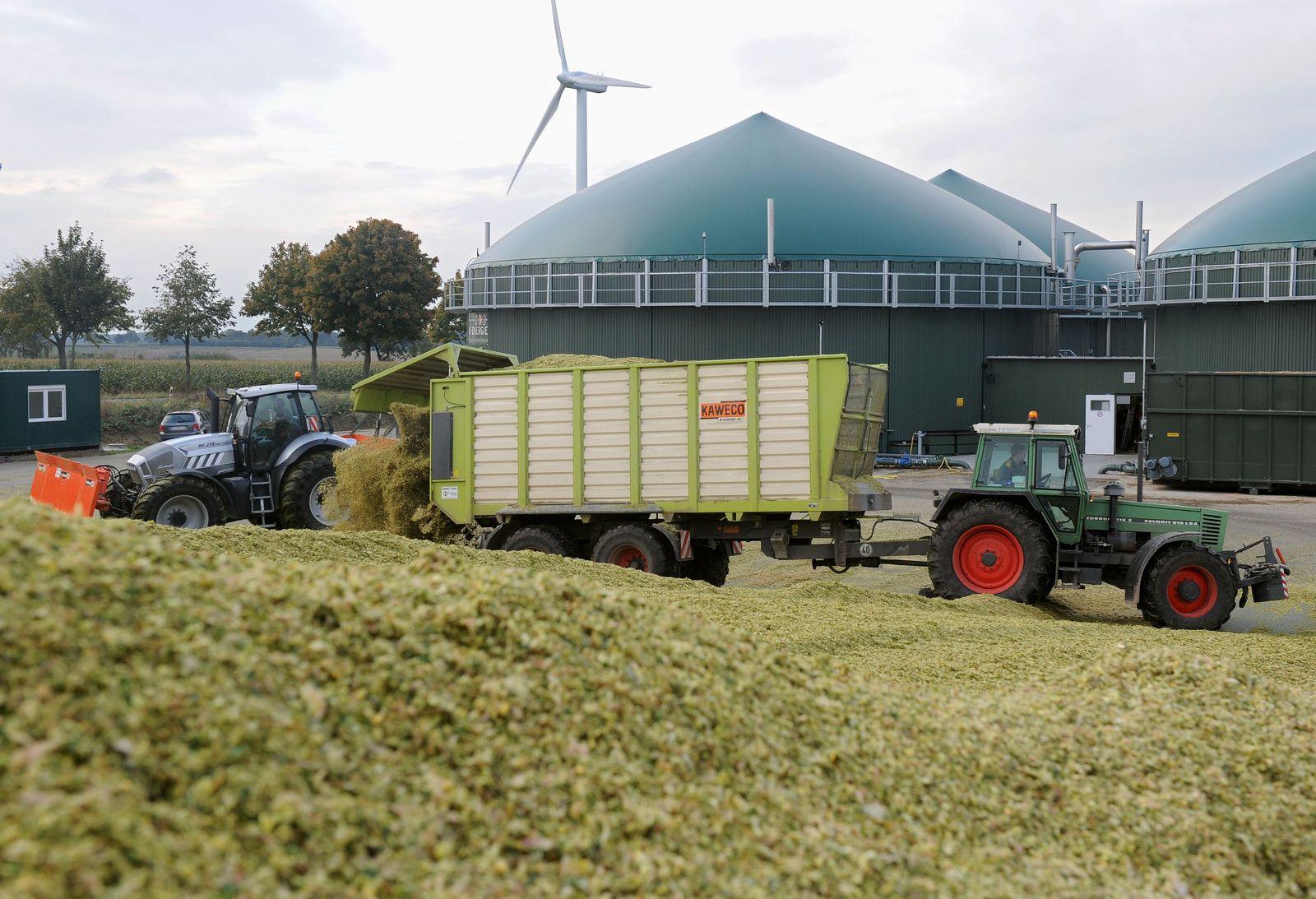 SPIN 11/2013 pp 18 / Energiewende / Maisanlieferung auf Biogasanlage