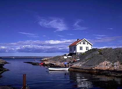 Schwedische Westküste: Der Stein- und Felsengrund ist ein idealer Lebensraum für Hummer