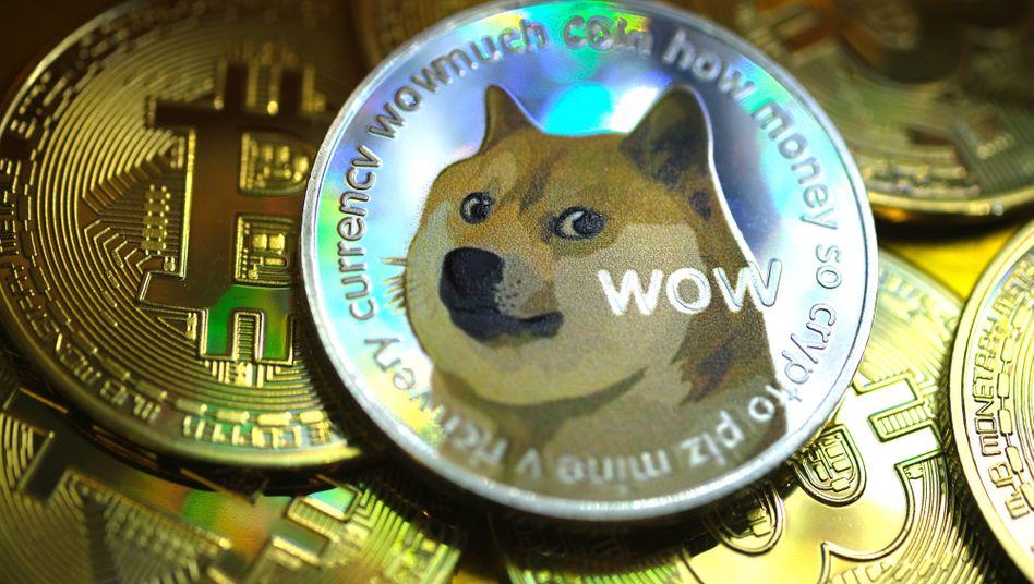 """Who let the Dog out?"": Symbol der neuen Hype-Währung Dogecoin"