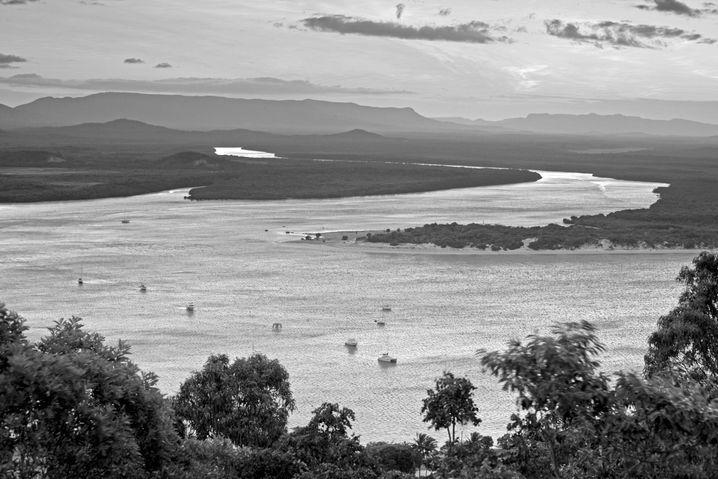 Das Vorkommen eines Gutteils der Flora und Fauna Australiens konzentriert sich auf die Wet Tropics von Queensland, darunter auch den Endeavour River.