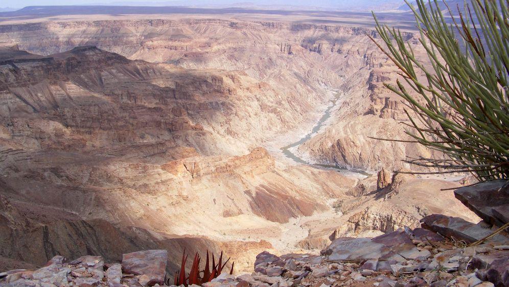 """Wüsten-Trip mit dem Fahrrad: Als """"Desert Knight"""" durch Afrika"""