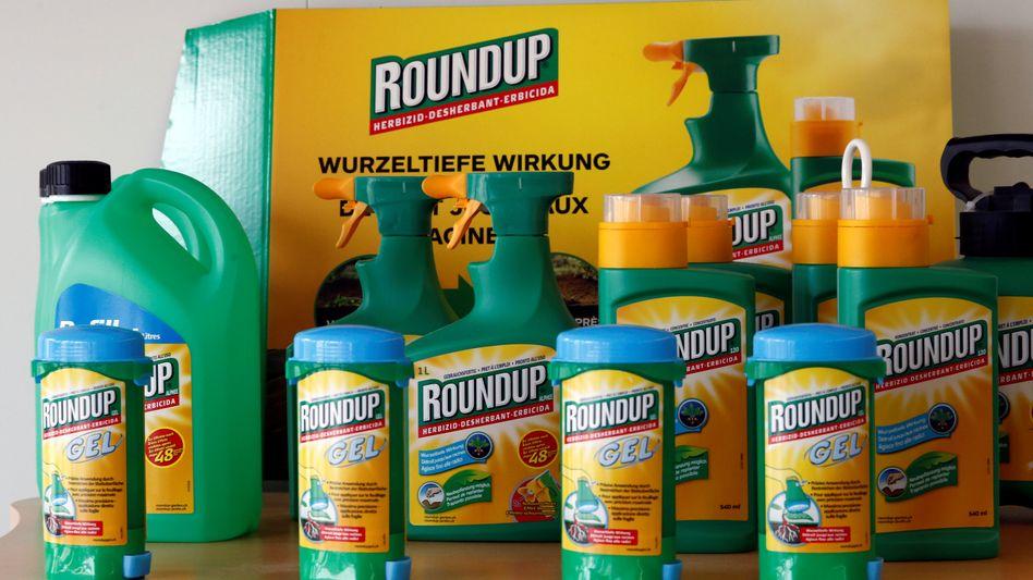 Monsantos Topseller Roundup: Wo Glyphosat ausgebracht wird, wächst keine grüne Pflanze mehr. Nach einer Entscheidung der EU darf das Total-Herbizid weiter eingesetzt werden - obwohl die WHO es für bedenklich hält