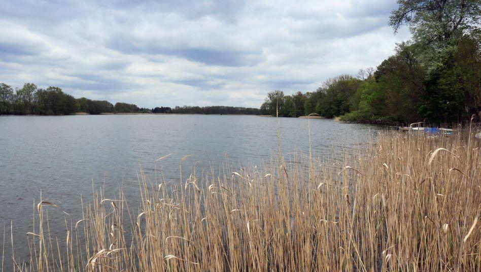 Liebenberger See bei Grünheide: Tesla will im Frühjahr 2020 mit dem Bau des Werkes beginnen