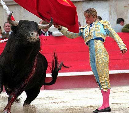 Matador Christina Sanchez: Stierkämpfe in der Arena, Kampf gegen Windmühlen zwischen Buchdeckeln