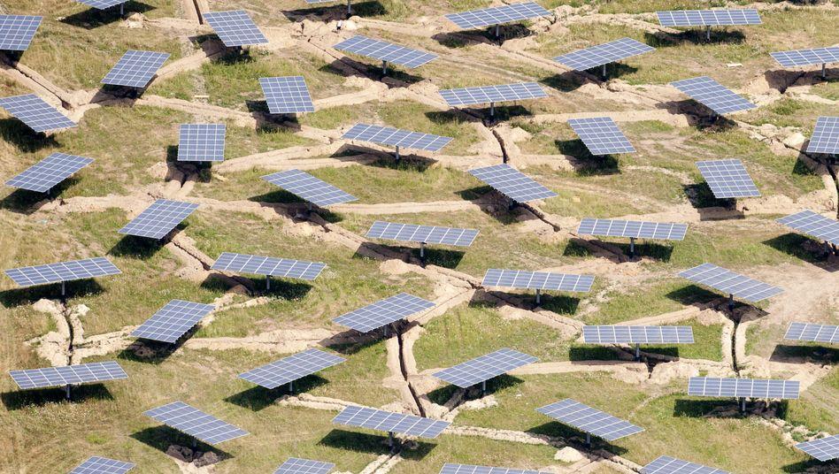 Solarpark in Brandenburg: Die Politik fördert den Bau von Solarfabriken in Ostdeutschland seit Jahren mit Millionenbeträgen