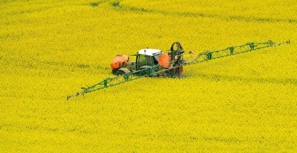 Landwirtschaft: Bayers Agrarsparte entwickelt sich schlechter als die Konkurrenz