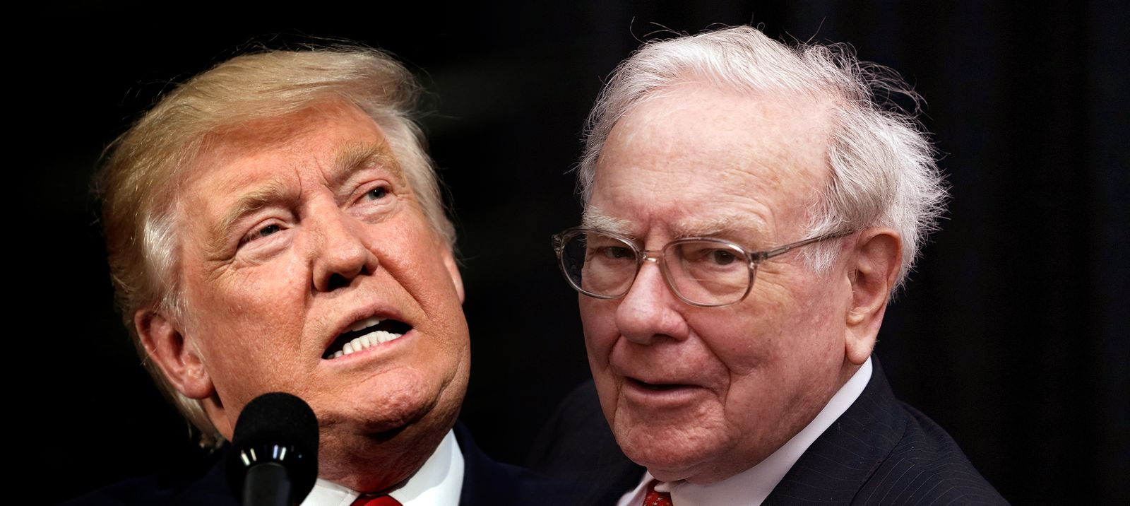 KOMBO Donald Trump / Warren Buffett