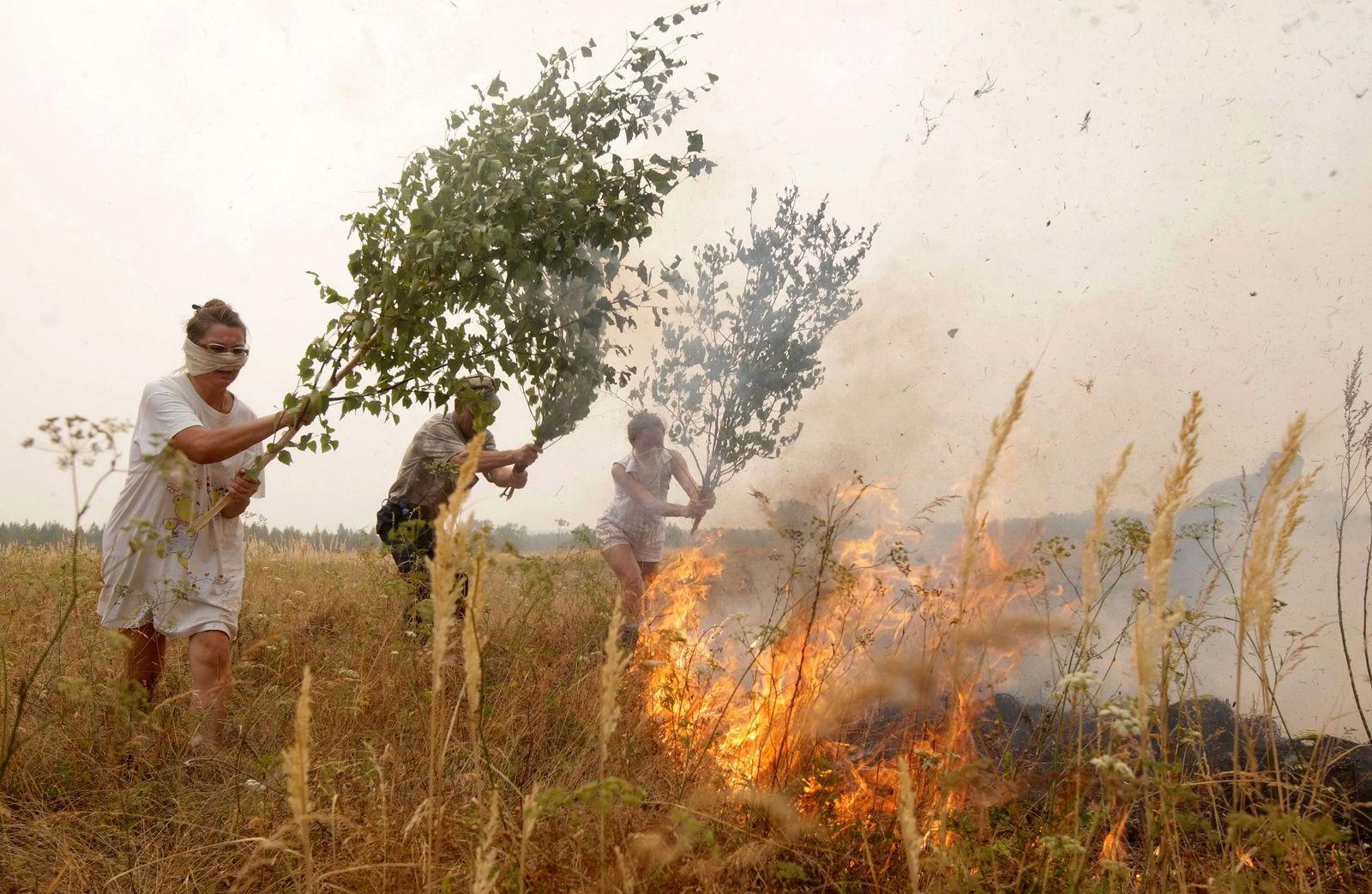 Brände in Russland / brennendes Feld / Feuer / Brand / Dürre