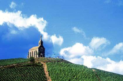 Typisch für das Beaujolais: Die Kapelle St. Laurent d'Oingt steht oberhalb von vielen Weinbergen