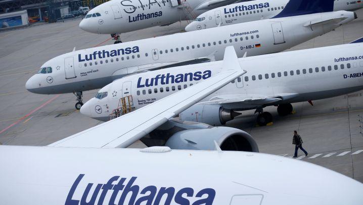 Umtriebiger Kranich: Die vielfältigen Partnerschaften der Lufthansa