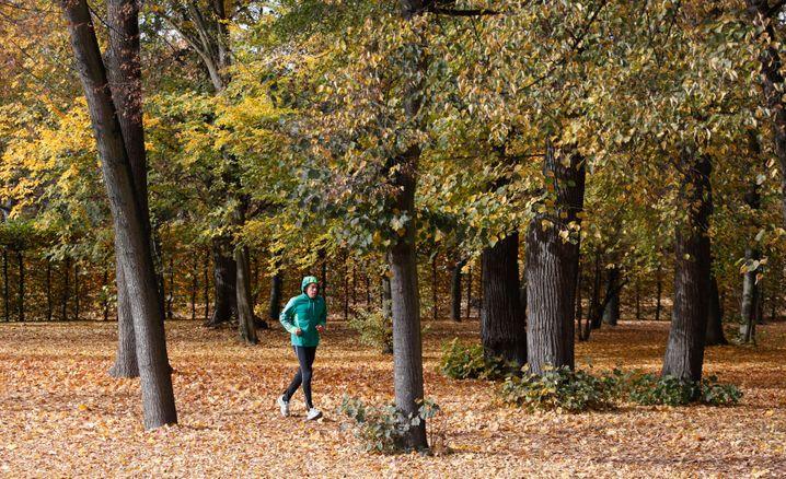 Laufstrecken finden sich überall: Läuferportale helfen, sie zu finden