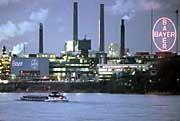 Gewinnpotential Bayer: 270 Mio. Mark