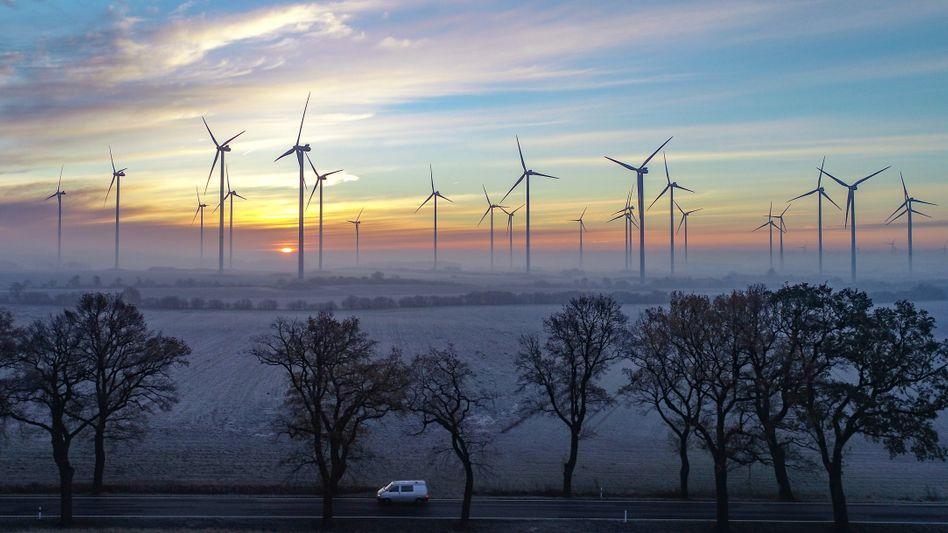 """Windräder in Brandenburg (2018): """"Kapazität von Windkraft an Land und auf See sowie Photovoltaik muss nahezu verdreifacht werden"""""""