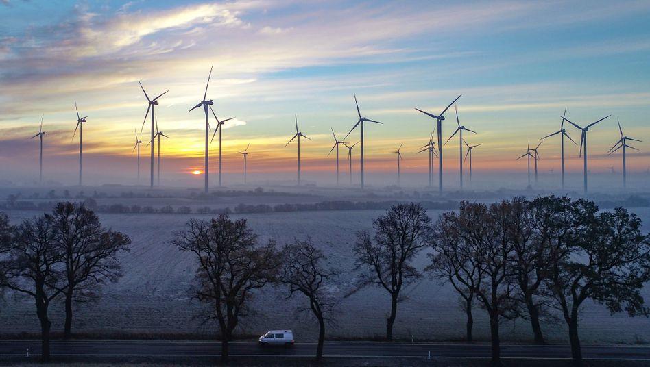 Windräder in Brandenburg: Der Anteil neuer Energien am Strommix nimmt weiter zu.