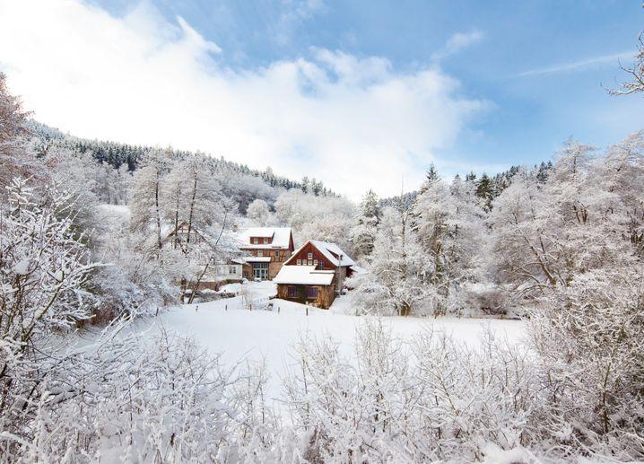 Verwunschen im Wald: Bärenmühle, Hessen